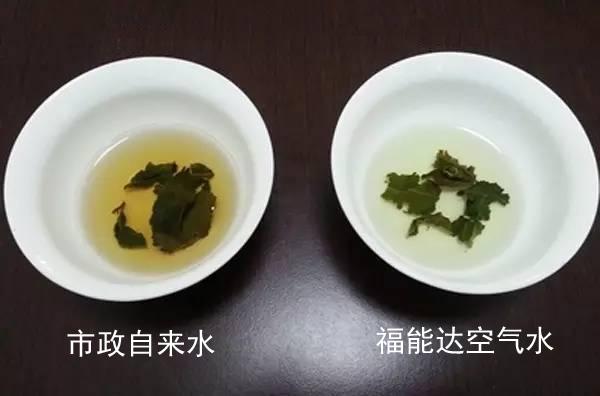 自来水与空气水泡茶对比图