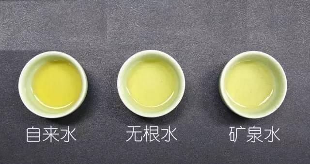 几种水泡出来的茶