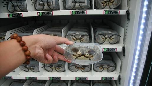 大闸蟹自动贩卖机