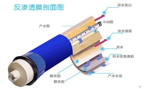 反渗透膜剖面图