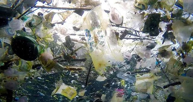 怵目惊心的塑料垃圾