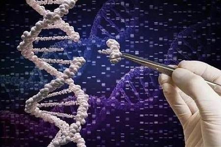 """首例基因编辑婴儿出世,霍金预言的""""超级人类""""恐成现实?"""